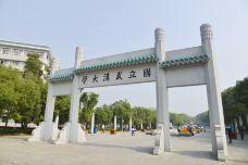_DSC1188-武汉大学-武汉-走爷
