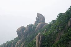 猴王献宝-三清山-doris圈圈