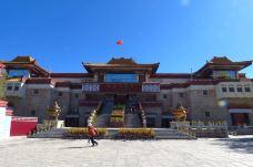 西藏博物馆-拉萨-大猫华南虎