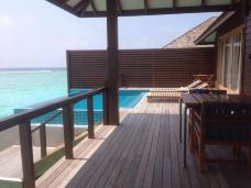 神仙珊瑚岛-神仙珊瑚岛-Brown