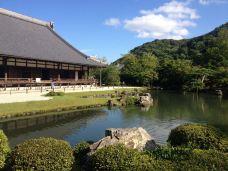 天龙寺-京都-予还