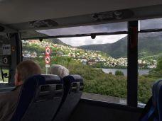 挪威-挪威-苗苗