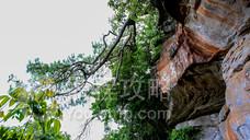 狮子山旅游区
