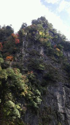 东拉山大峡谷-宝兴-大绵羊