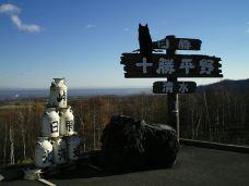 羊之丘展望台-札幌-享旅世界