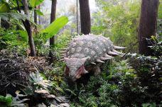 长隆野生动物世界-广州-曾经文武双全