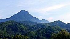 五指山热带雨林风景区-五指山-zx****06
