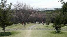 剑英公园-梅州-宝贝随遇而安