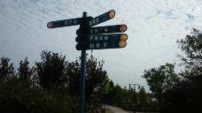 少海湿地公园-胶州-Jacke
