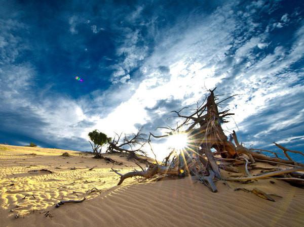一半是沙子一半是绿色的白音敖包 - 克什克腾旗游记攻略【携程攻略】