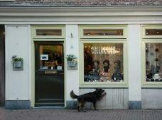 阿姆斯特丹CELLARRICH图片