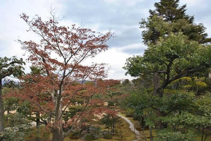 日本大阪自由行攻略 附详细交通指南 - 京都游