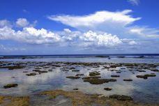 丘鲁海滩-天宁岛-兔爺