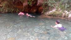 冷水河自然保护区-金沙-m82****25