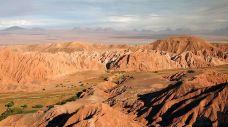 阿塔卡马沙漠-智利-m82****25
