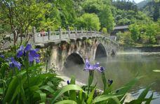 天津桥-武当山-路上的友人