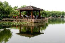 白石公园-湘潭-用户3433647