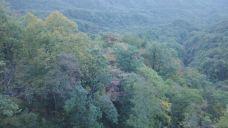 神农顶风景区-神农架-158****9418