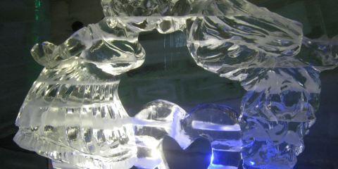 樹木園主題樂園冰雕博物館