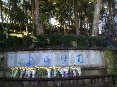 国殇墓园-腾冲-莱恩-Lion