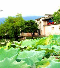 镇江游记图文-我们的旅途之南京、扬州、镇江、宏村、黄山