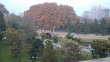 丛台公园-邯郸-M10****940