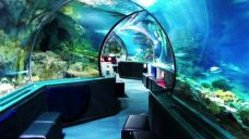 海底世界水族馆