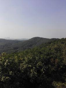 南山-镇江-M11****855