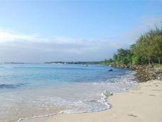 塔加海滩-天宁岛-兔爺