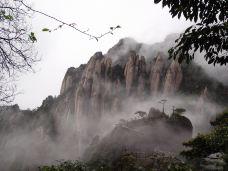 万寿园景区-三清山-天下第一游客