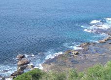 蓝色海洋路-悉尼-fcy911