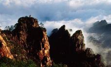 丹霞峰-狮子峰-黄山风景区-盲龟_浮木