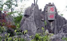 千岛湖石林-千岛湖-盲龟_浮木