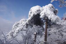 黄山风景区-黄山-123-traveller