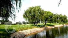 天龙湾国际高尔夫俱乐部