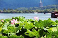 杭州-nicecoming
