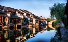 西塘风景区-西塘-W_熊猫