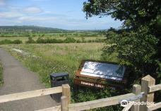 Diamond Jubilee Wood-北爱尔兰