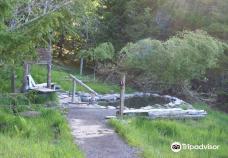 Breitenbush Hot Springs-底特律