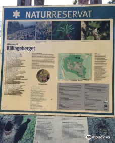 Balingeberget Nature Reserve-吕勒奥