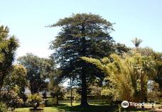 Jardins de Sant´Ana -蓬塔德尔加达